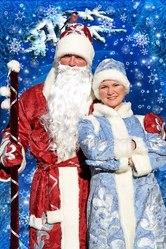 Дед Мороз на дом Полтава
