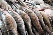 Продам рыбу и морепродукты
