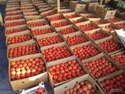 Доставка овощей и фруктов в Полтаве
