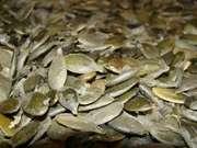 Продам семена тыквы Голосемянной