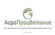 Купить Прилипатель Альфалип Экстра Оптом