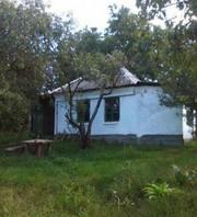 Продам домик в окрестности Полтавы. В живописном месте,  рядом пруд.