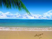 Поездки на море из Полтавы (самые низкие цены)